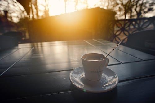 Fotos de stock gratuitas de amanecer, atractivo, beber, bosque