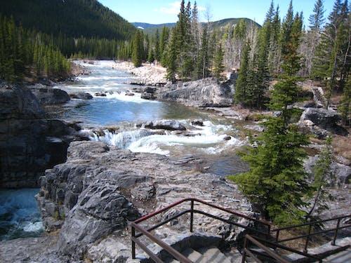 Gratis arkivbilde med Alberta, canada, fjell, foss