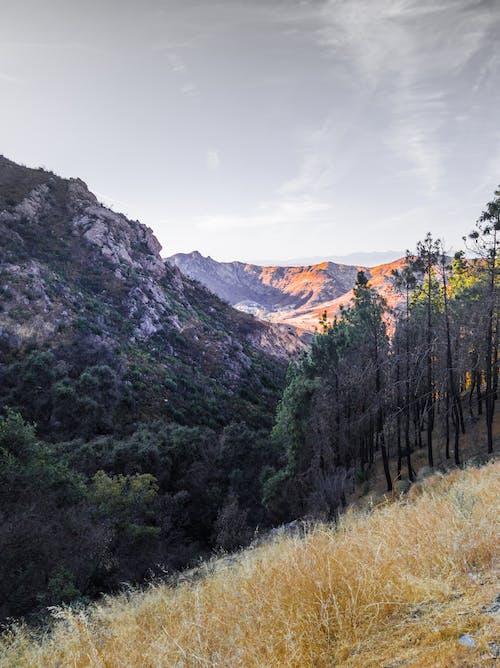 Free stock photo of adobe lightroom, adventure seekers, california