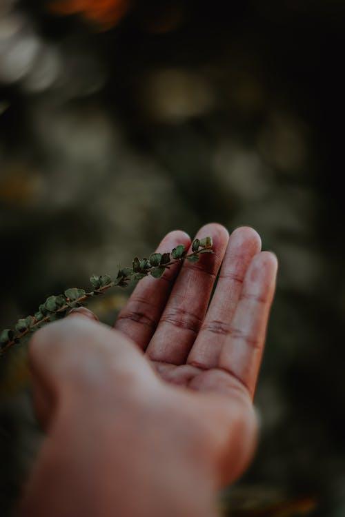 人, 增長, 天性