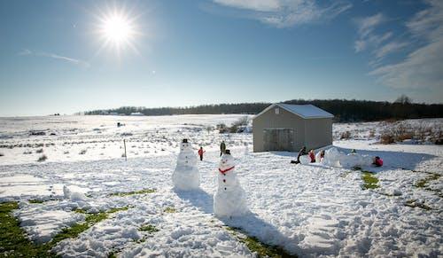 Free stock photo of blue sky, nature, snow, snowman