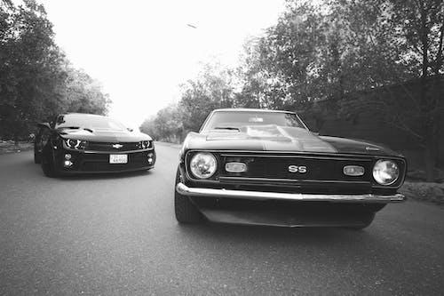 Modern and retro cars on asphalt road