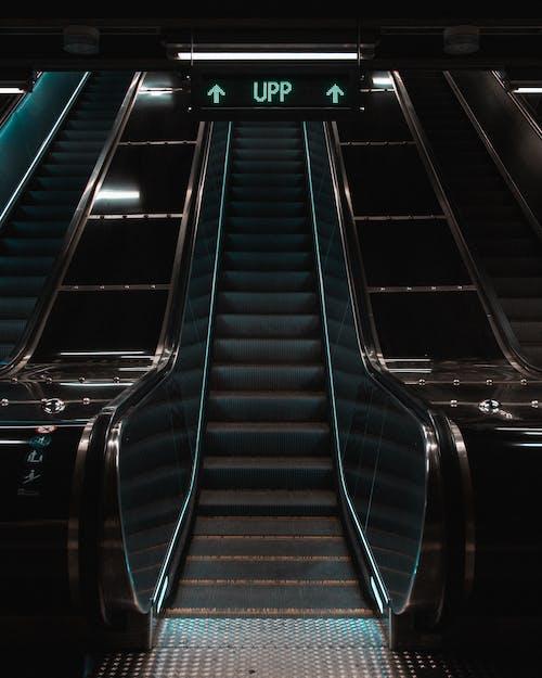 Foto stok gratis naik, neon, tangga berjalan