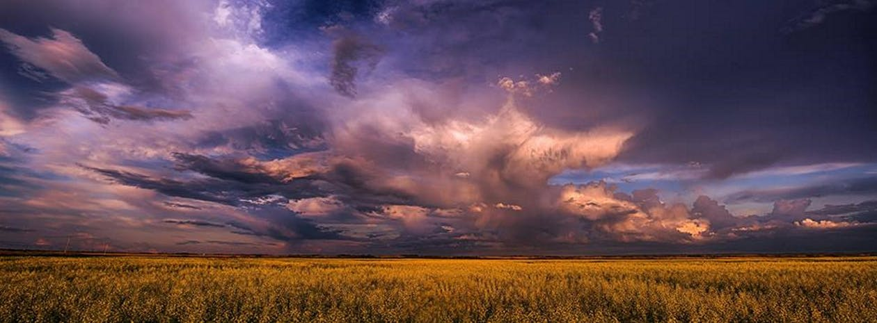 暴風雨, 草原, 草原风暴 的 免费素材图片