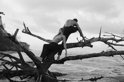 Ilmainen kuvapankkikuva tunnisteilla aallot, ajopuu, hiekkaranta, ihmiset