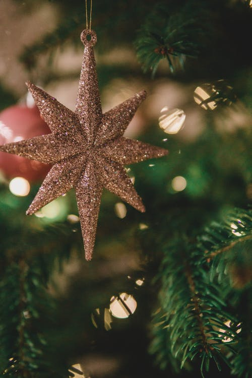 Free stock photo of christmas decoration, christmas tree, christmas wallpaper