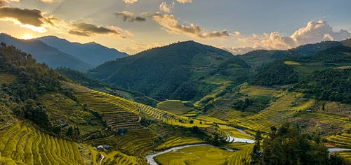 Fotos de stock gratuitas de agricultura, amanecer, anochecer, campo de arroz