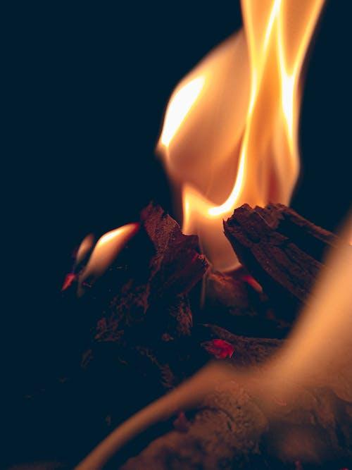 alev, alevler, HD duvar kağıdı, kamp ateşi içeren Ücretsiz stok fotoğraf