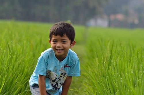 Бесплатное стоковое фото с маленький мальчик, семья, смех, счастливая семья