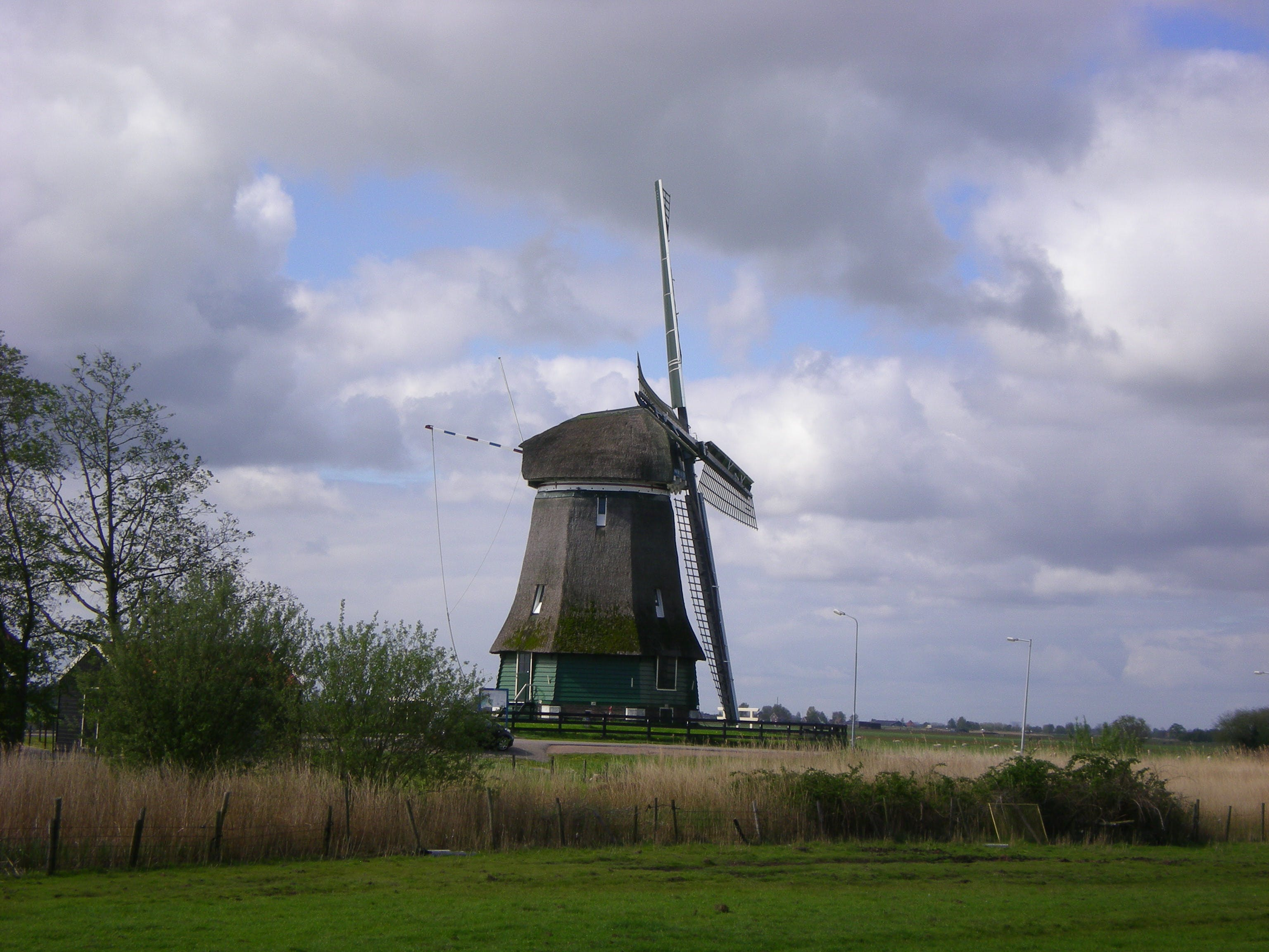 Free stock photo of grass, Holland, netherlands, sky