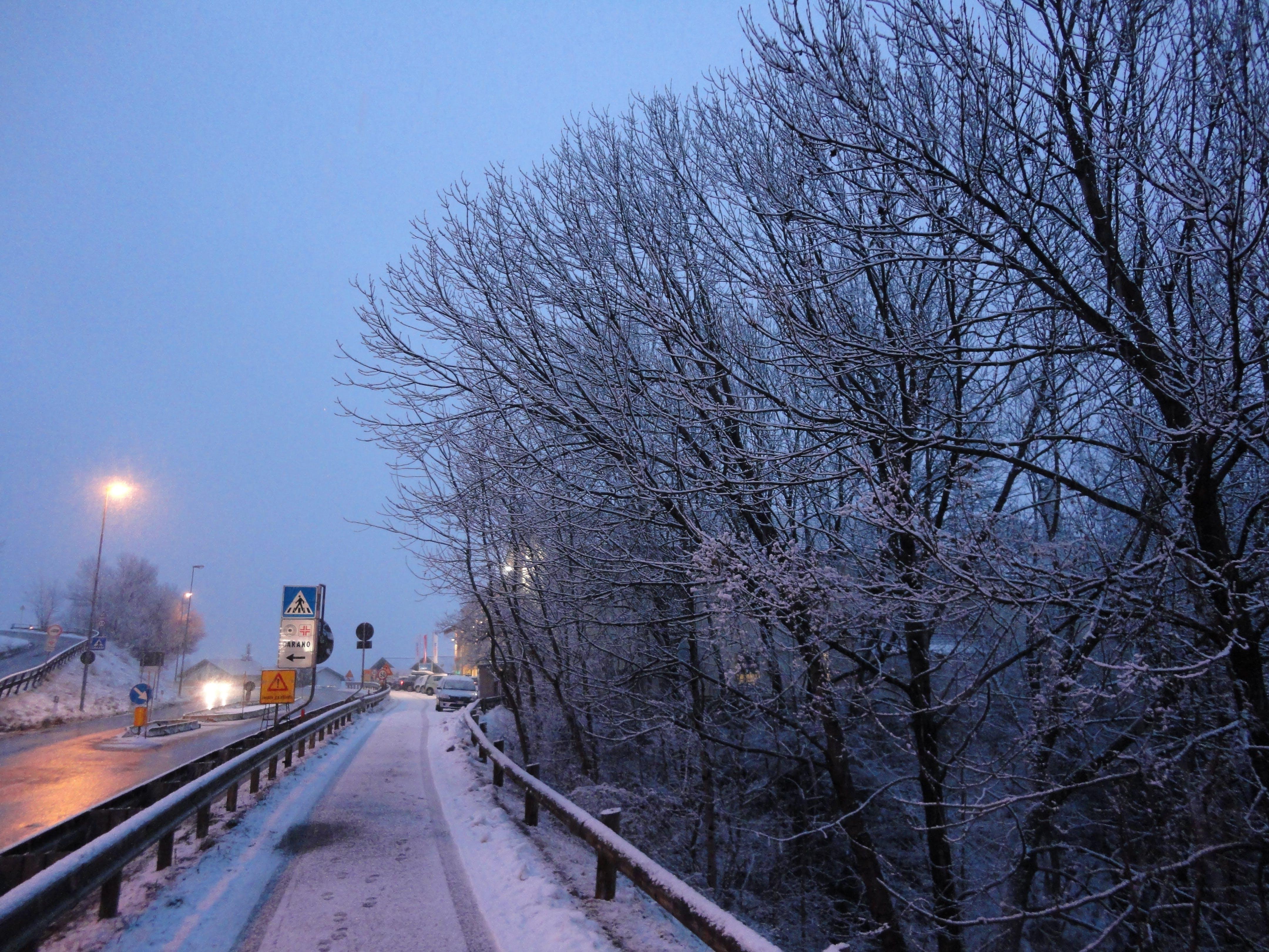 Free stock photo of Carano, Fiemme, inverno, light