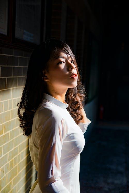 Imagine de stoc gratuită din brunetă, căutare, de sex feminin, expresie facială