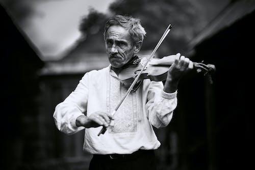 공연, 공연가, 남성, 남자의 무료 스톡 사진