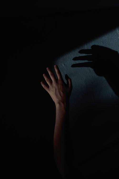 Person's Left Hand With Shadow On Wall