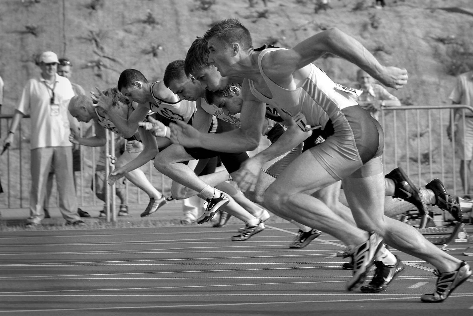 Popular Picks For The Marathon Road Runner