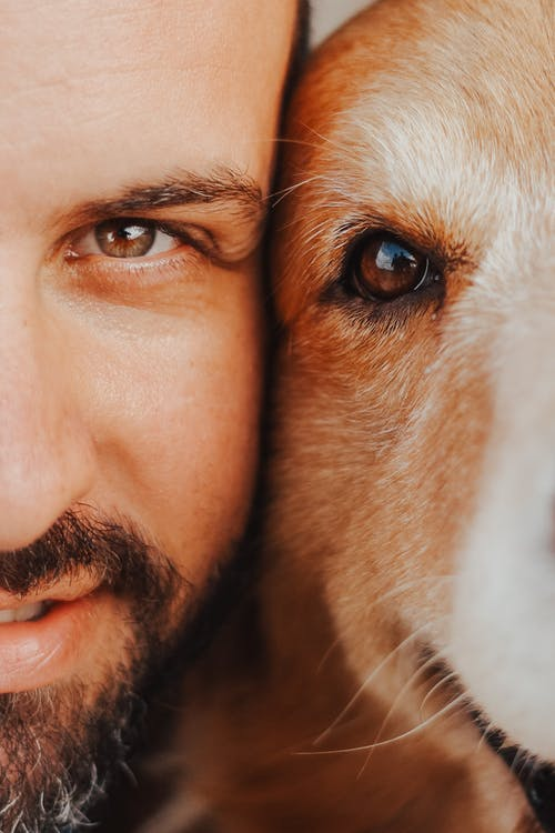Close-Up Photo of Man and Dog