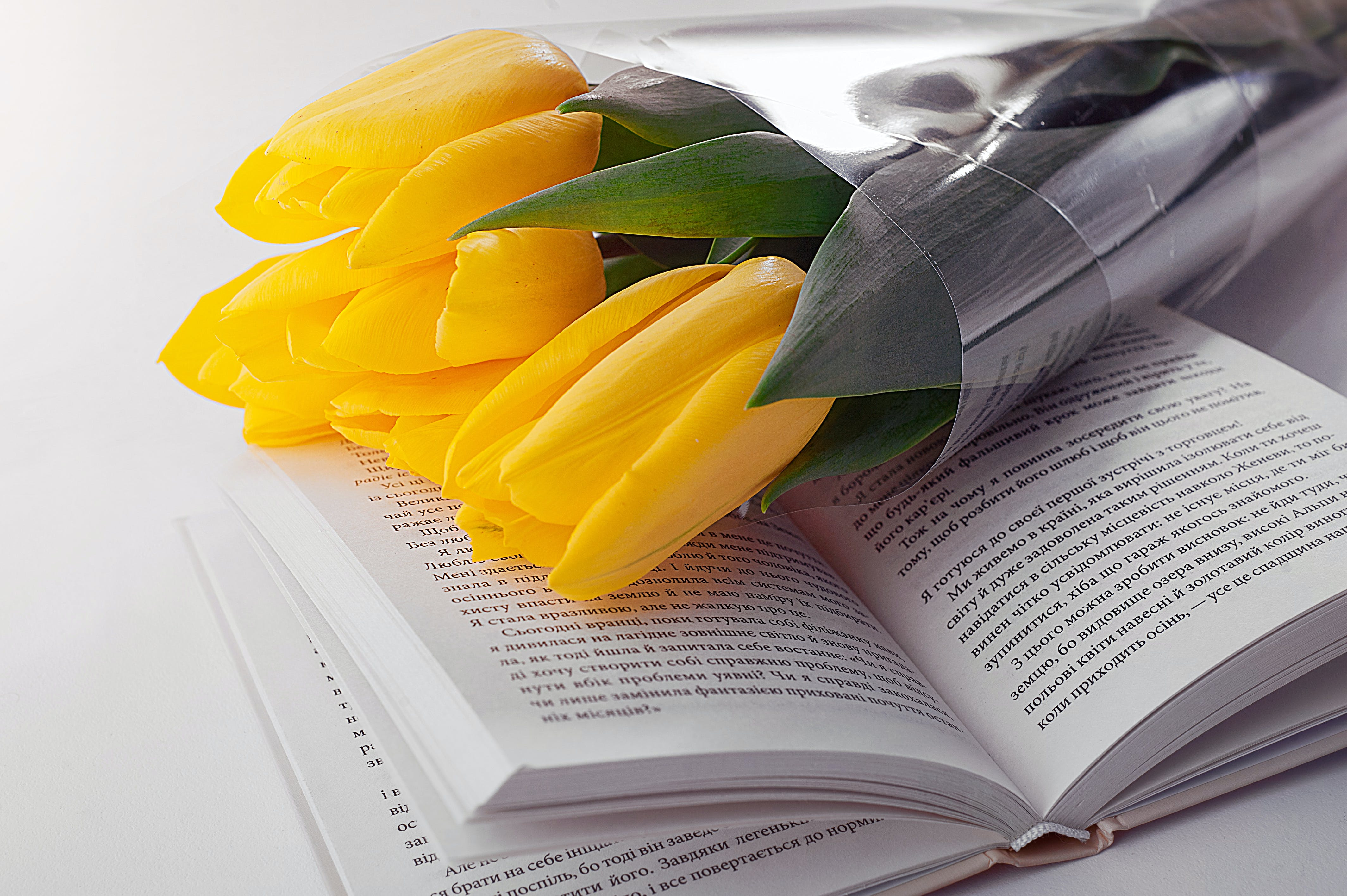 Yellow Tulips Flowers Bouquet on Top of White Printed Book