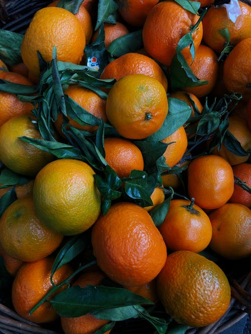 Bunch of Round Orange Fruits