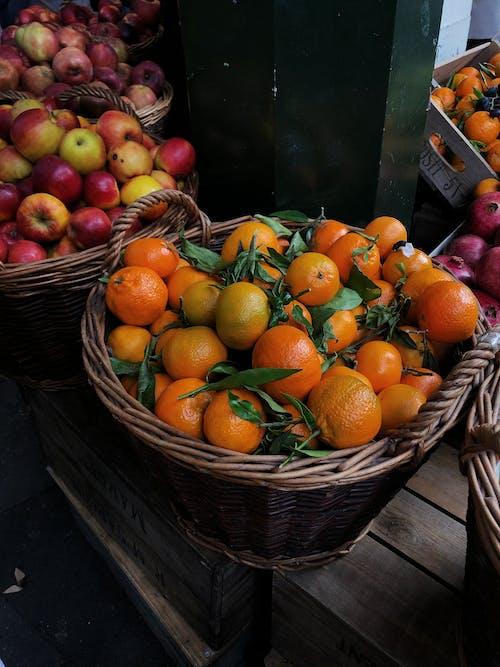 Imagine de stoc gratuită din abundență, agricultură, anotimp, bomboane