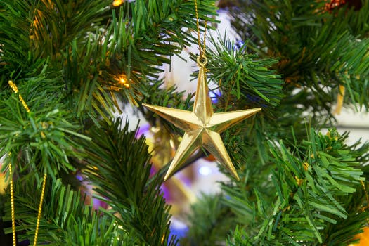 Free Stock Photo Of Christmas, Christmas Tree, Decoration