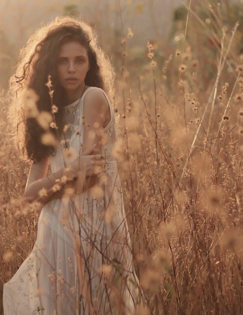 Fotobanka sbezplatnými fotkami na tému biele šaty, buš, fotenie, hracie pole