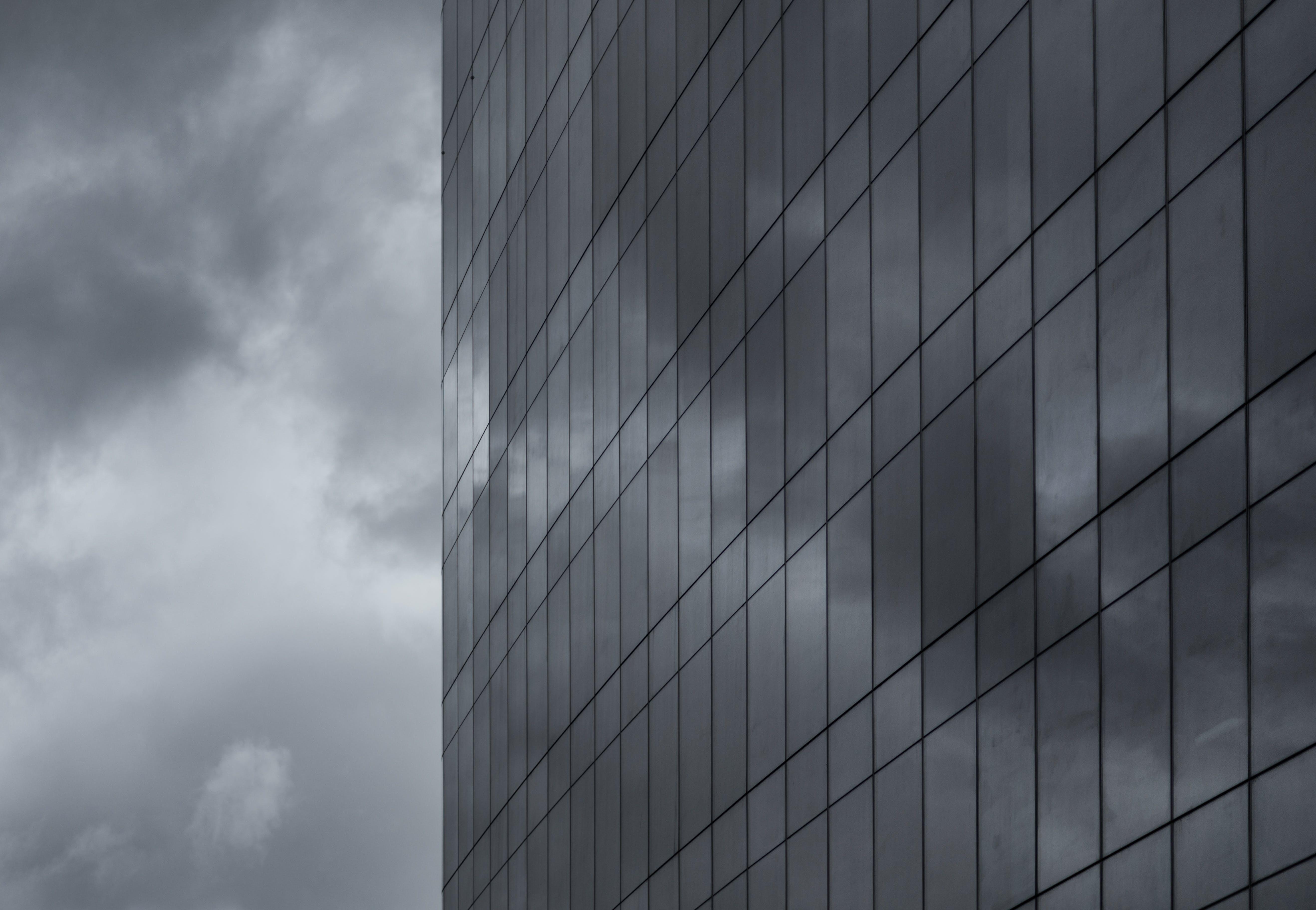 Gray Scale Window Photo