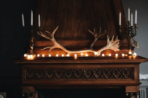 Brown Wooden Furniture with String of Lights and animal Horn