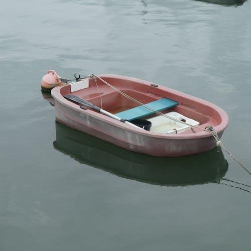 Fotos de stock gratuitas de barca, bateau, calme, eau