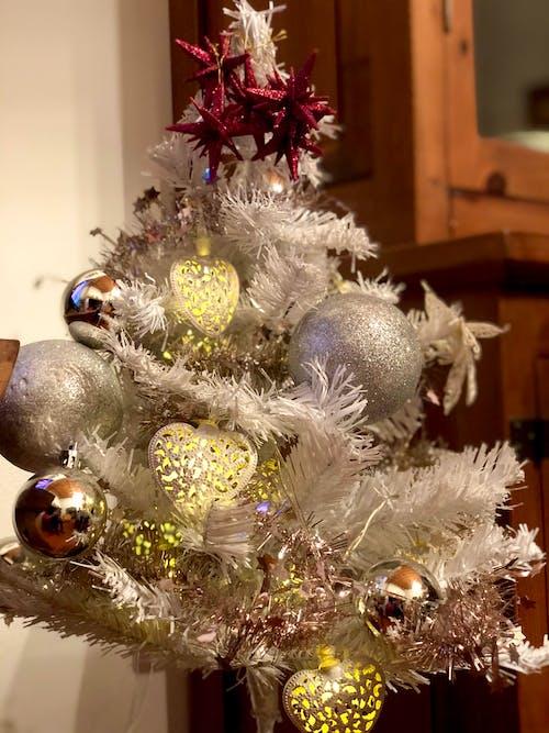 Foto profissional grátis de amor é amor, árvore de Natal, casa da família, família