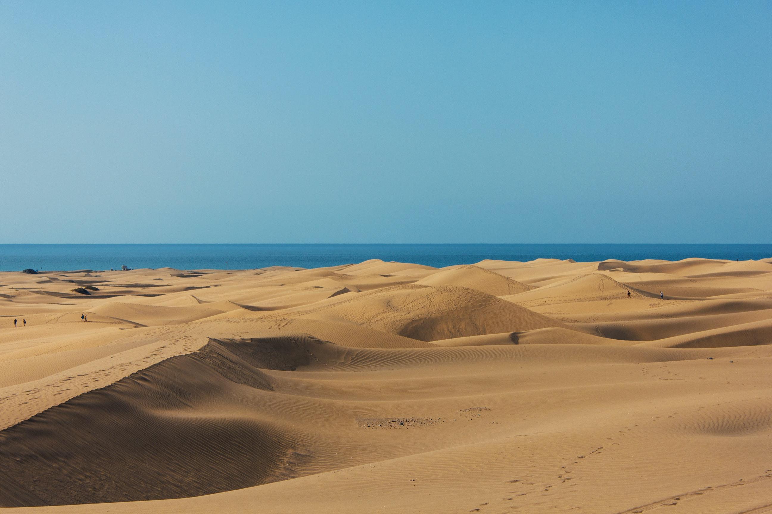 Brown Desert · Fr...