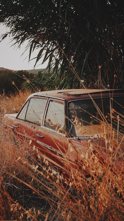 Imagine de stoc gratuită din abandonat, apus, auto, automobil