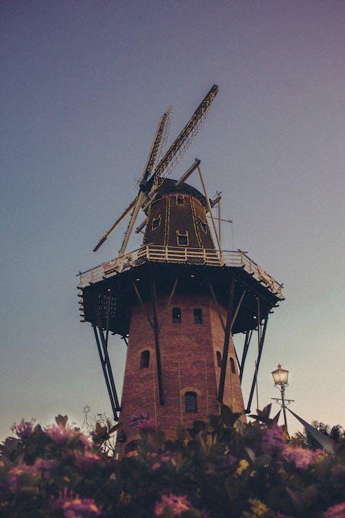 Fotobanka sbezplatnými fotkami na tému architektúra, budova, kvetinový záhon, mlyn
