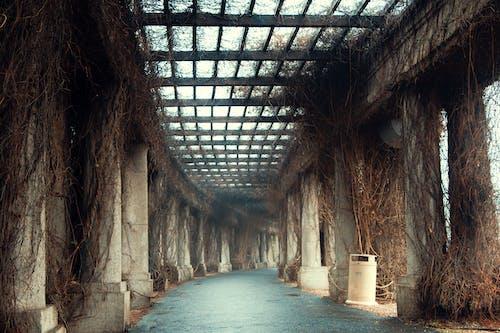 tünel içeren Ücretsiz stok fotoğraf
