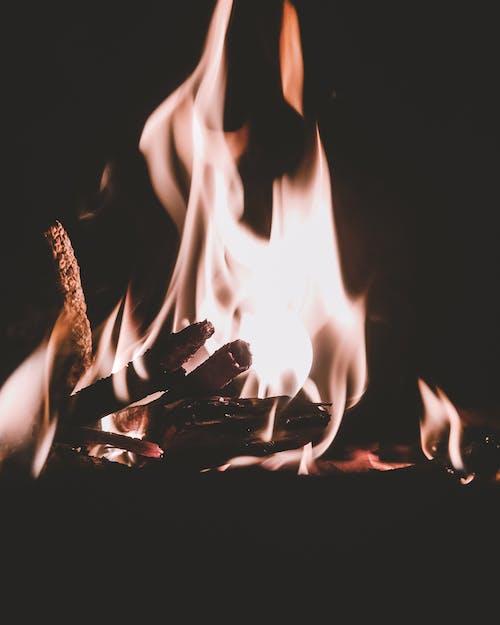 Kostenloses Stock Foto zu #mobilechallenge, brennholz, brennhölzer, defokussiert