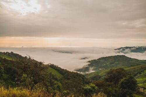 Fotobanka sbezplatnými fotkami na tému hliadka, hmla, hora, krajina