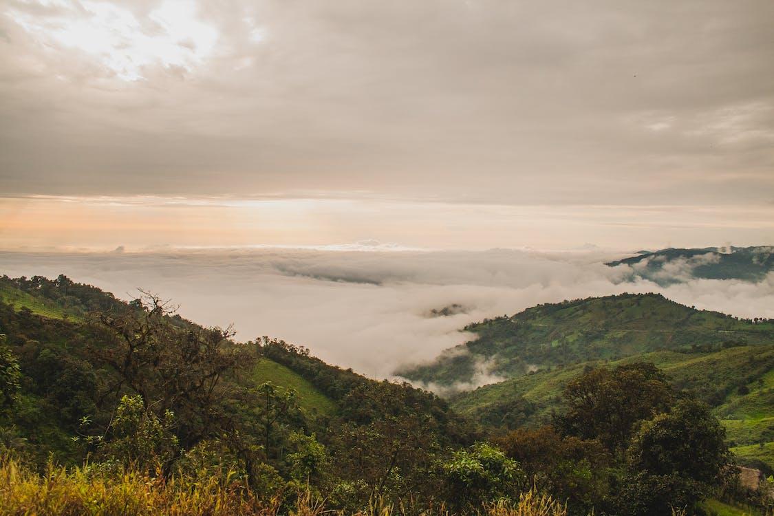 bjerg, landskab, natur