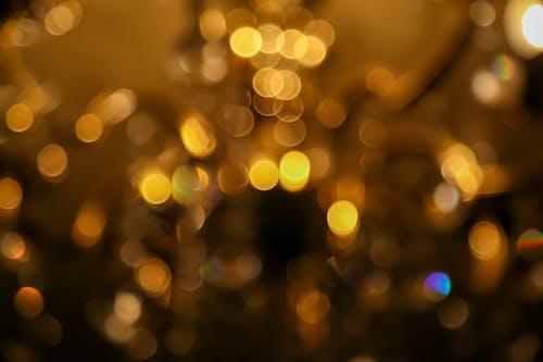 ゴールデン, ボケ, 光の無料の写真素材