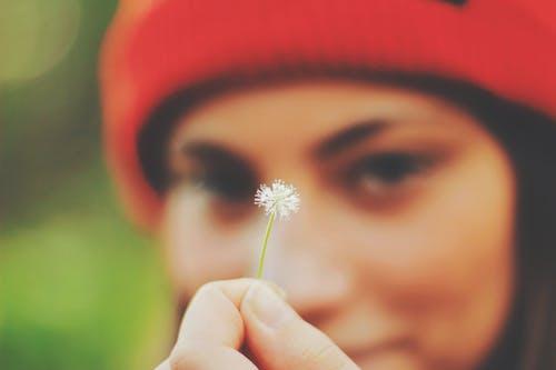 Imagine de stoc gratuită din dragoste, fată, floare