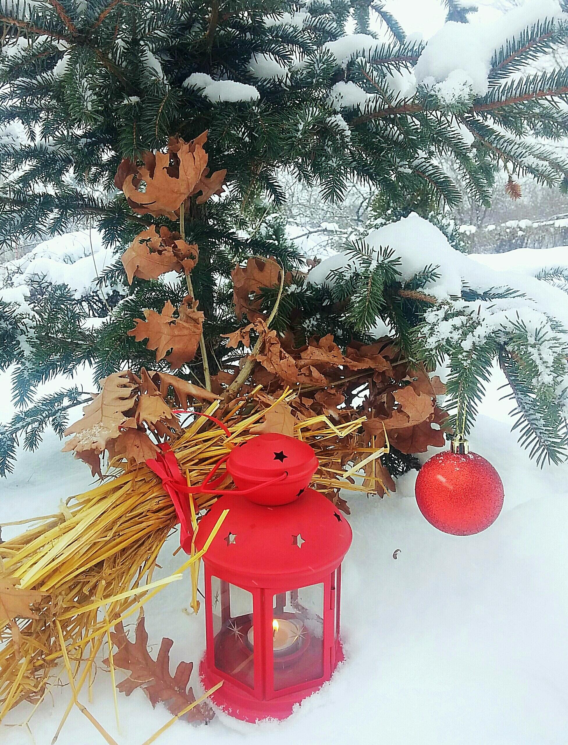 Weihnachten Orthodox.Free Stock Photo Of Orthodox Christmas Symbols