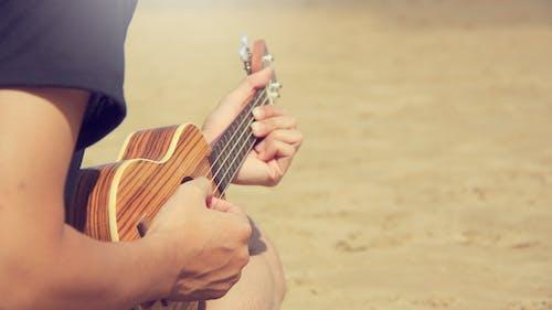 Základová fotografie zdarma na téma denní světlo, dospělý, hudba, kytara