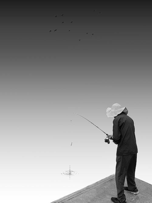 Fotos de stock gratuitas de cándido, mínimo, monocromático, pescando