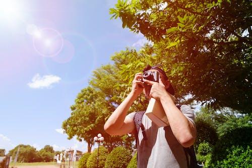 Foto d'estoc gratuïta de arbres, articles, càmera, cel