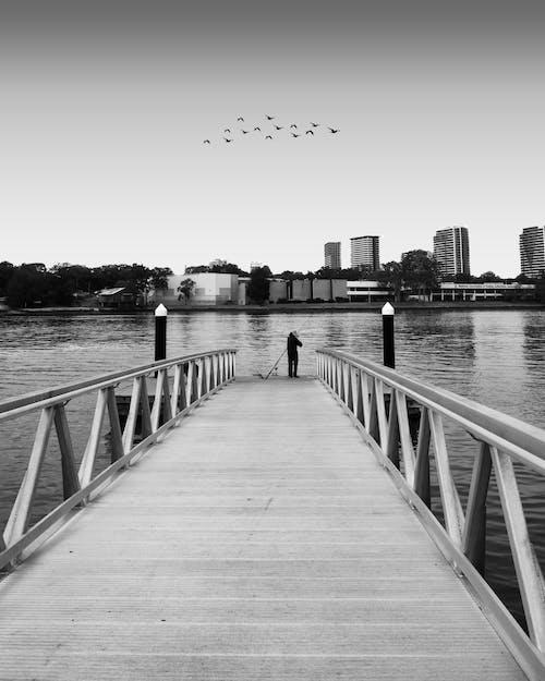 Fotos de stock gratuitas de agua Azul, mínimo, pescando, puente