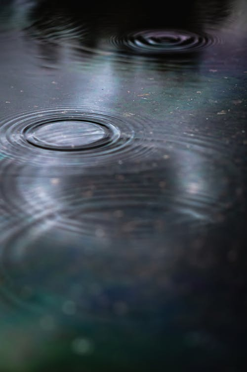 Selective Focus Photo of Water