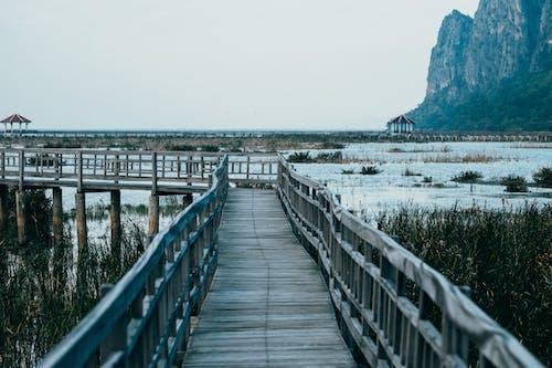 Бесплатное стоковое фото с вода, гора, горизонт, деревянные доски