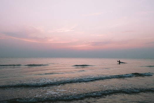 Free stock photo of sea, dawn, nature, sky