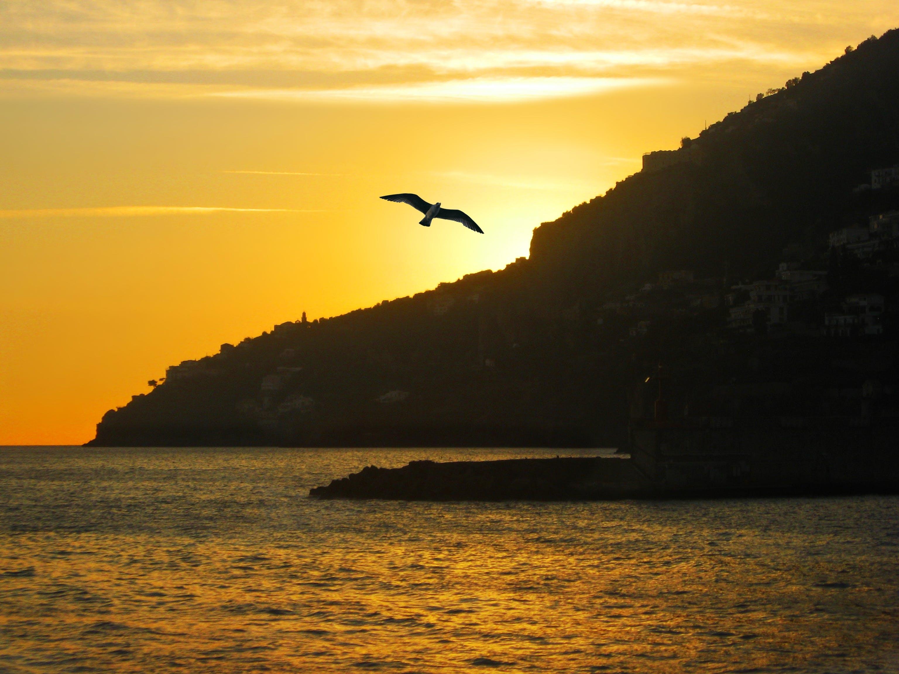 Free stock photo of amalfi, ave, beach, costa amalfitana