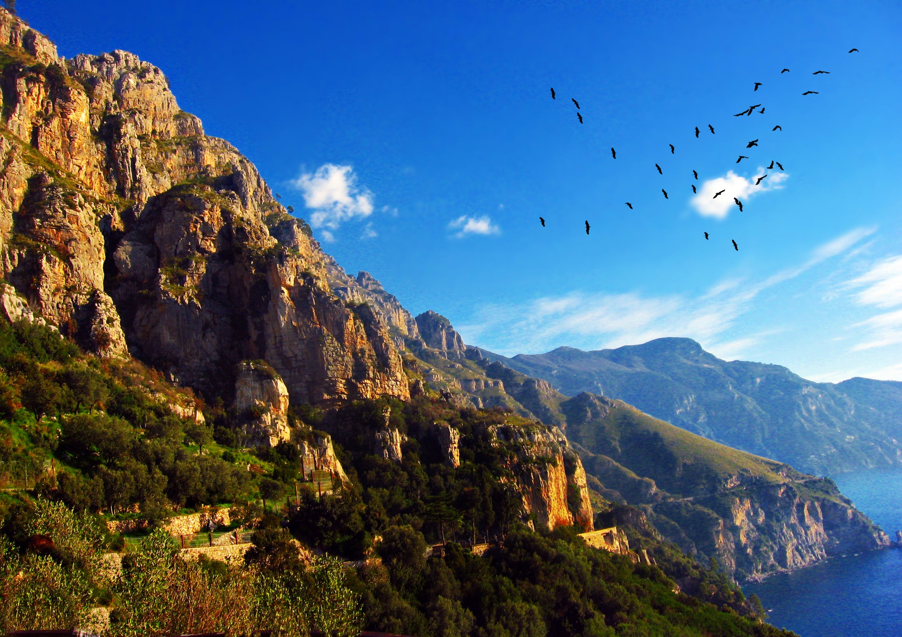 Free stock photo of amalfi, aves, beach, clouds