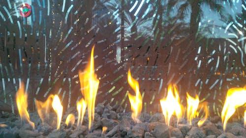 Foto profissional grátis de chama, copo, fogo, fogueira