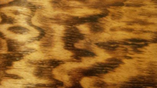 Foto profissional grátis de castanho, conhecimento, madeira, queimado